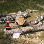 Logs, drill, hammer, and spawn dowels.