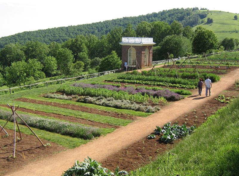 Gardening Wisdom From Thomas Jefferson: 5 Things You ...  |Thomas Jefferson Garden Seeds
